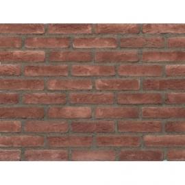 Eco Brick Red