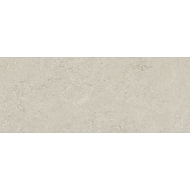 Concrete grey 20x50 1M2/box